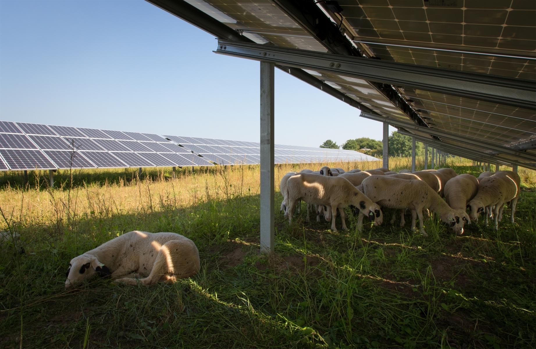 Energietransitie (RES) leeft binnen de VVD!